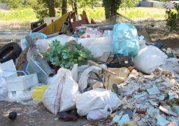 Біля нового скверу на Митниці, який було закладено у рамках двомісячника благоустрою, знову з'явився стихійний смітник