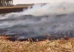 За добу рятувальники ліквідували масштабні пожежі сухої трави та стерні