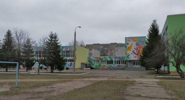 28-ма школа зацвіла: її стіни прикрасив мурал у вигляді казкових рослин