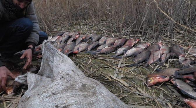 Під Черкасами зловили браконьєрів