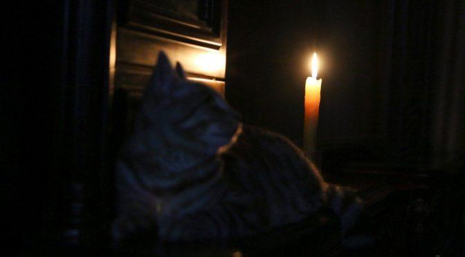 8 населених пунктів Черкащини залишилися без електрики через негоду