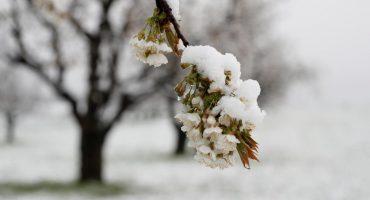 Синоптики попереджають про похолодання до -6° та можливий сніг