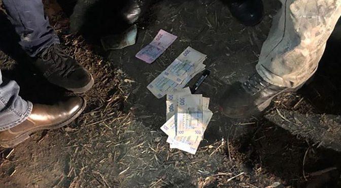 СБУ блокувала незаконний збут деревини на Черкащині