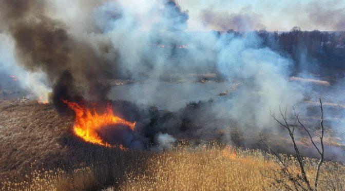 5 років в'язниці та до 150 тисяч штрафу – в Україні вводять нові покарання за спалювання сухої трави