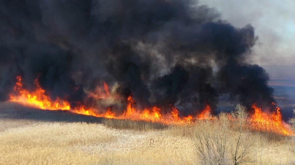 Липівський орнітологічний заказник, пожежа, дрон,