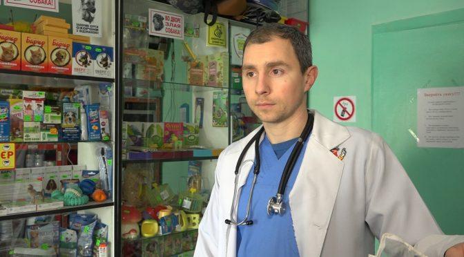 Ветеринарний лікар: Людина не може від тварини заразитись COVID-19