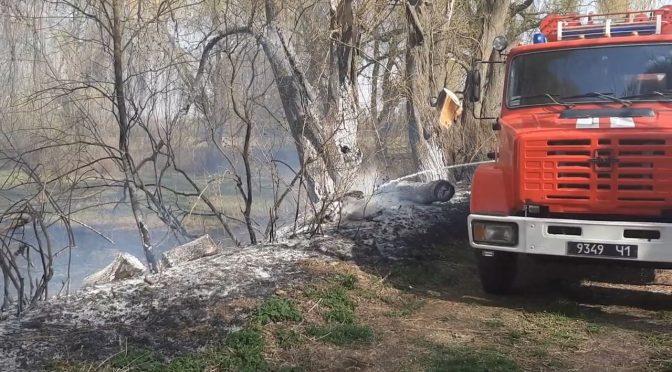 Черкащина у вогні: за добу згоріли сухостої на понад 16 га