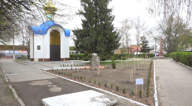 Вандали вкрали дерева на алеї «Мамина весна» у Смілі