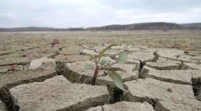Травень розпочався дощами, проте на водність річок вони не вплинули – Черкаський обласний гідрометцентр