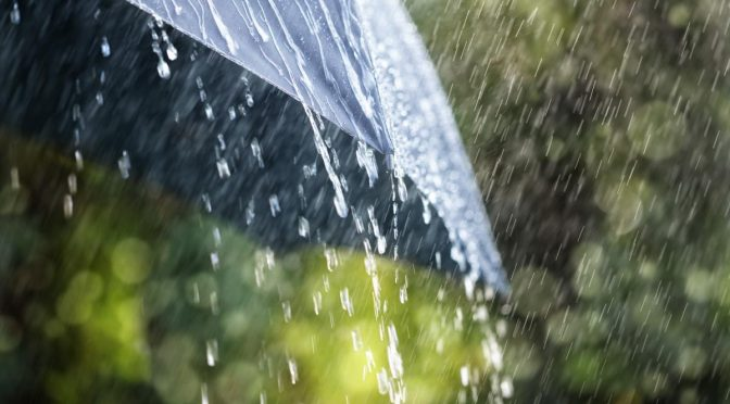 До кінця тижня на Черкащині ще дощитиме – синоптики