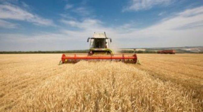 На 25% території області спостерігається ґрунтова засуха