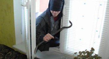 У Черкасах патрульні затримали чоловіка, який проник до чужої квартири на 6 поверсі