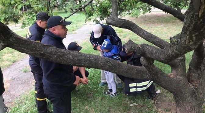 У Черкасах рятували 5-річну дитину, що застрягла на дереві