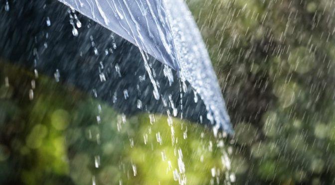 З четверга температура повітря незначно знизиться, а у вихідні очікуються грози