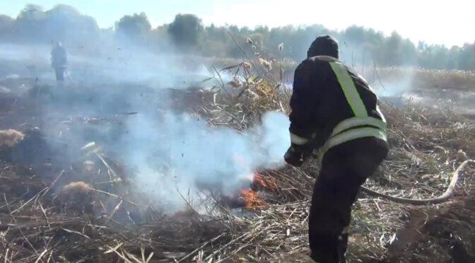 На Жашківщині горіло сміттєзвалище