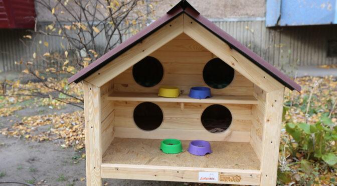 У Черкасах запустили соціальний проєкт по створенню будиночків для вуличних котів