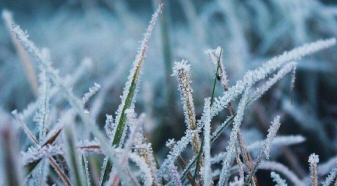 З 15 січня очікується похолодання до -17º