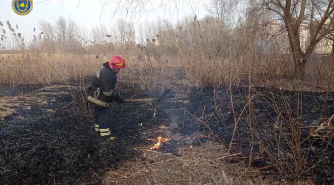 13 пожеж сухої рослинності на понад 22 гектарах землі ліквідували рятувальники області протягом доби 29 березня