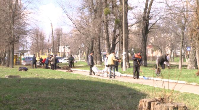 Працівники «Сміламаш» долучилися до весняної толоки