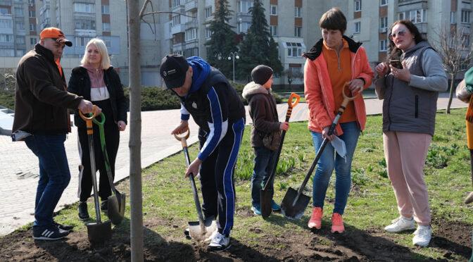 У Черкасах висадили дерева в пам'ять про загиблих в АТО
