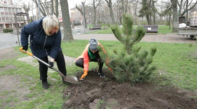 Учасниці жіночого руху «За Майбутнє» посадили дерева у парку «Чайка»