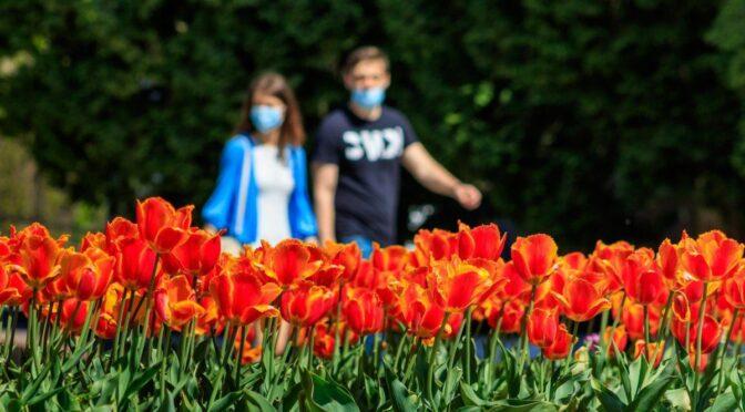 Синоптики: у ніч на 9 та 10 травня існує висока ймовірність заморозків на поверхні ґрунту, а з 11 травня настане літо