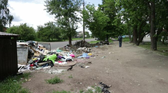 Попри те, що відповідні служби вчасно вивозять звідси сміття, звалище по вул. Гетьмана Сагайдачного не припиняє своє існування