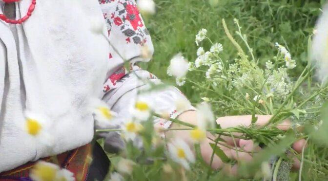 Свято Івана Купайла на Черкащині: швидку допомогу викликали на місця святкування 5 разів