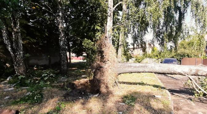 Під час негоди 12 липня на території Золотоніської ОТГ дуже постраждало село Благодатне