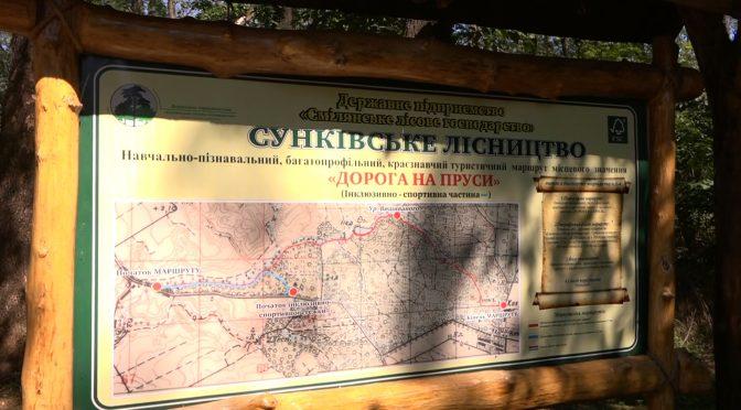 Туристичний маршрут «Дорога на Пруси», що у Сунківському лісництві на Кам'янській трасі, цікавий і доступний