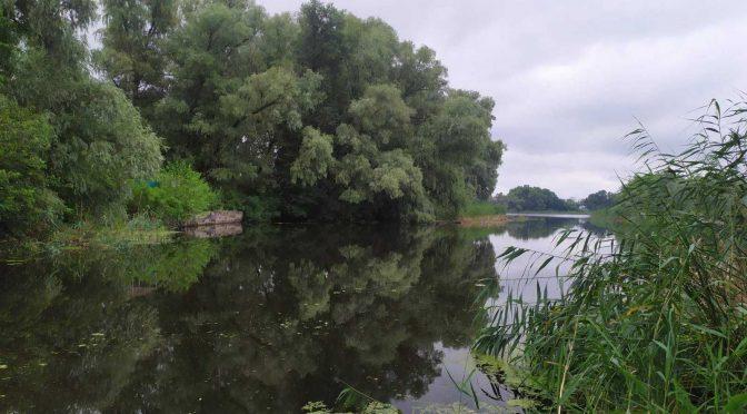 Скасовано речове право і повернуто в державну власність понад 800 м2 водного фонду у Свидівку