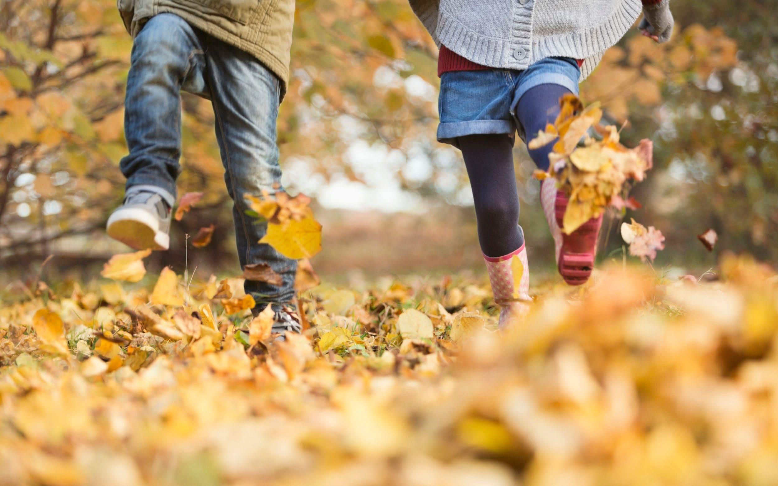 погода, пізня осінь, Черкаси