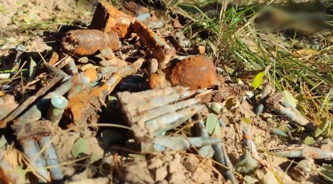 У лісі поблизу с. Деньги грибники знайшли гранати часів Другої світової війни